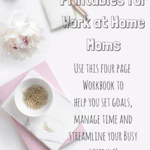 Workbook for Working Moms