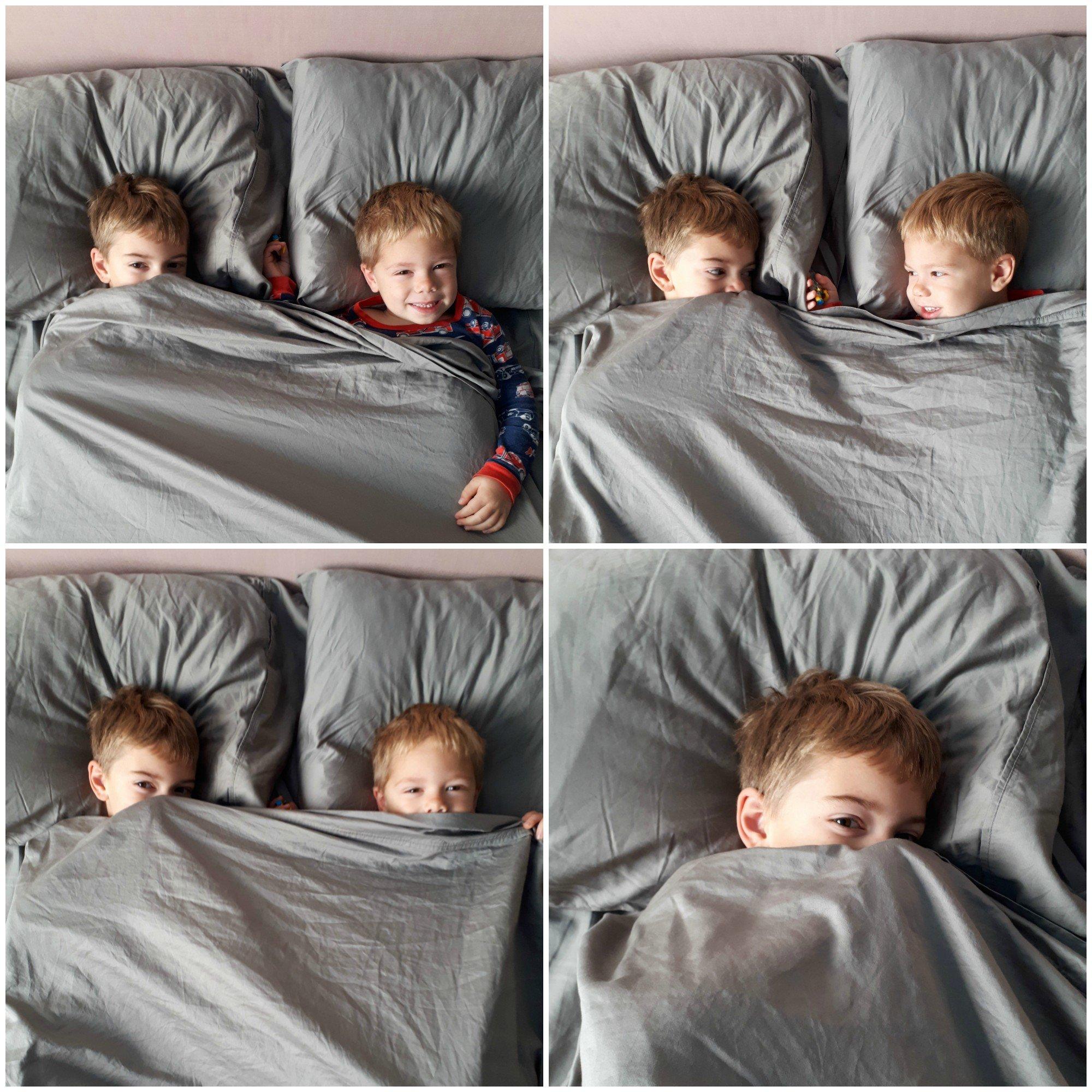 California Design Den 100% cotton sheets. My boys sure love getting cozy!