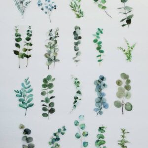 Eucalyptus stickers to add to Etsy orders