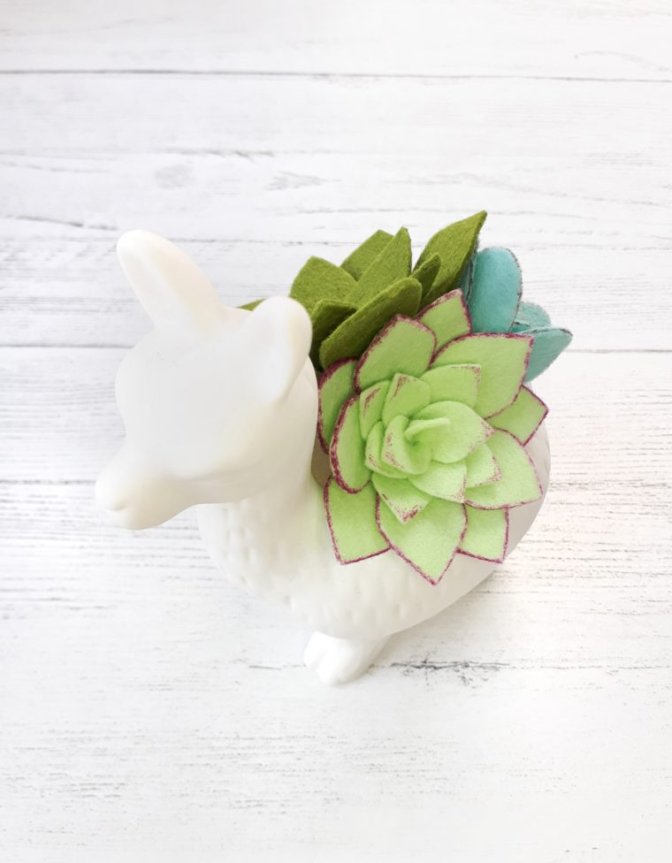 How to make a beautiful DIY felt succulent planter. Includes free printable patterns for 3 different succulent designs.